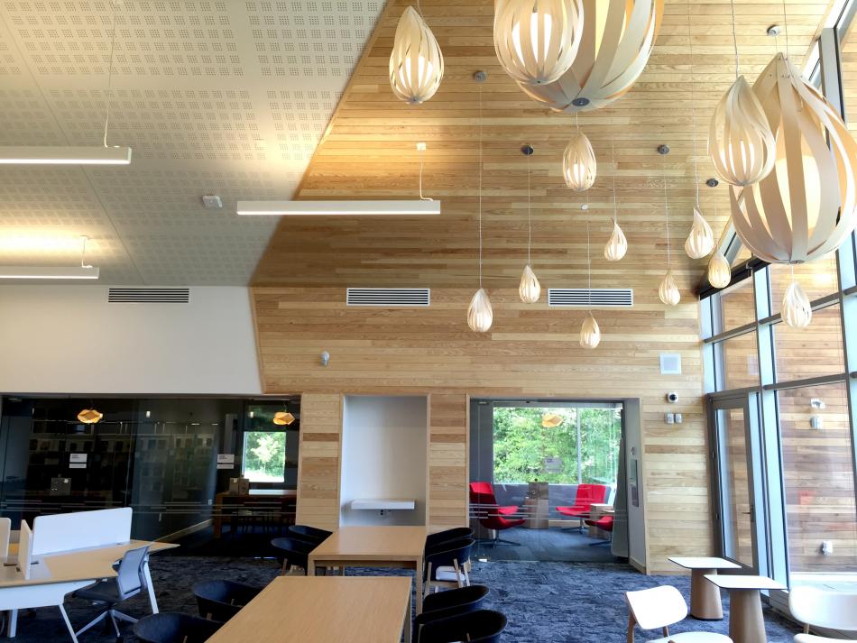 Varina-Library-Custom-Light-Fixtures-Richmond-VA