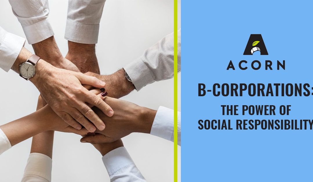 B Corporations: The Power of Social Responsibility